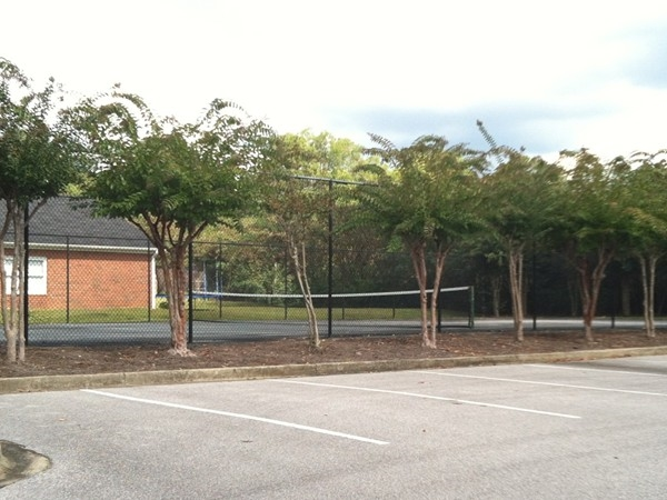 Enjoy a game of tennis in the Lakeview community courts.