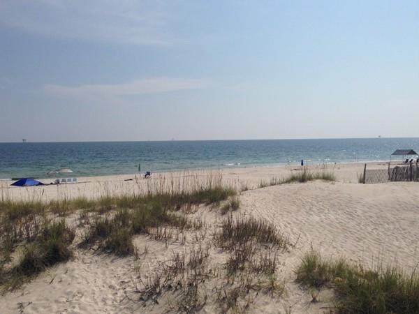 Natural dunes