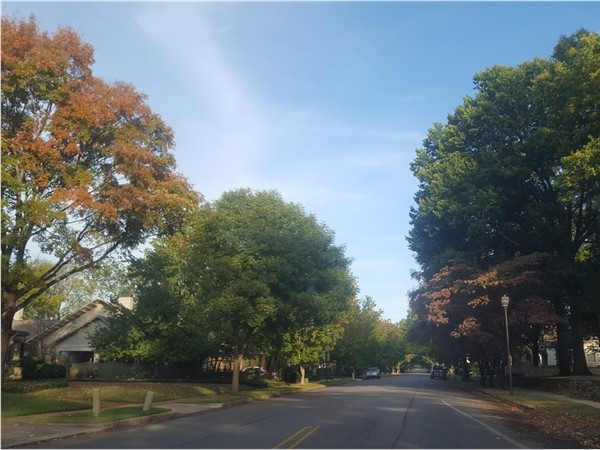 Leaves are changing and falling through Huntsville's Historical District