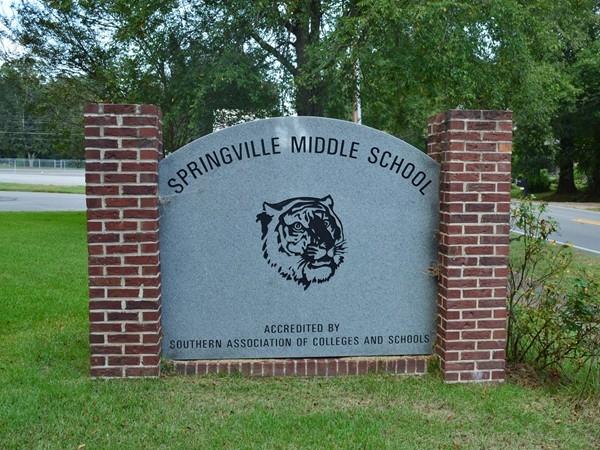 Springville Middle School