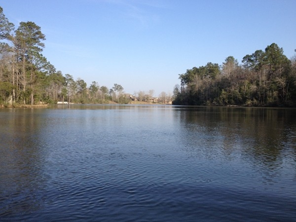 Wilkins Creek has community access to two lakes