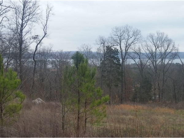 View from one of the available lots at Deer Run in Warrenton