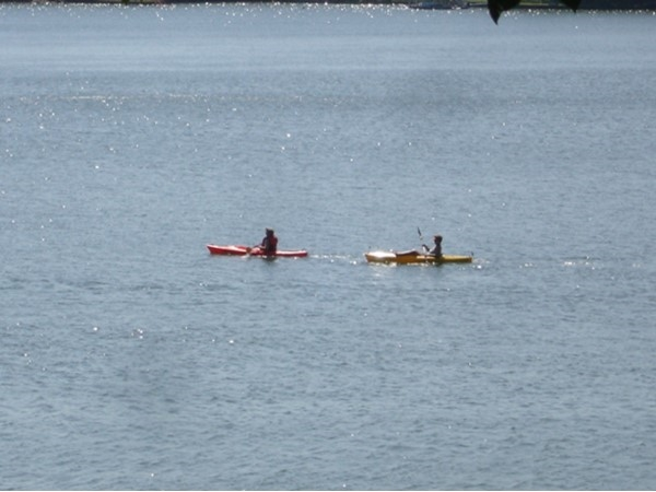 If water skiing is not your sport, Lake Wedowee is great for kayaking