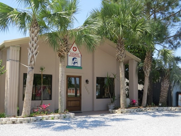 Looking for a great vet?  Visit the Canal Road Animal Hospital
