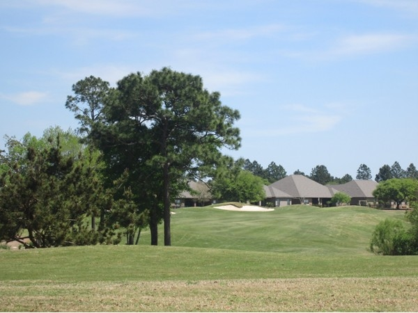 Homes along one of the fairways in the master development of Glen Lakes on CR 20 in Foley.