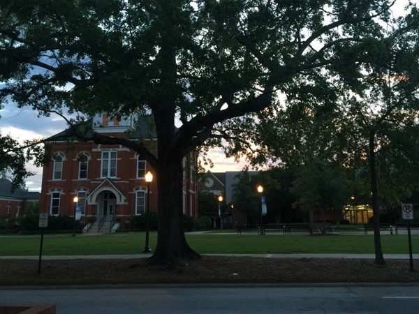 Another beautiful evening on the plains