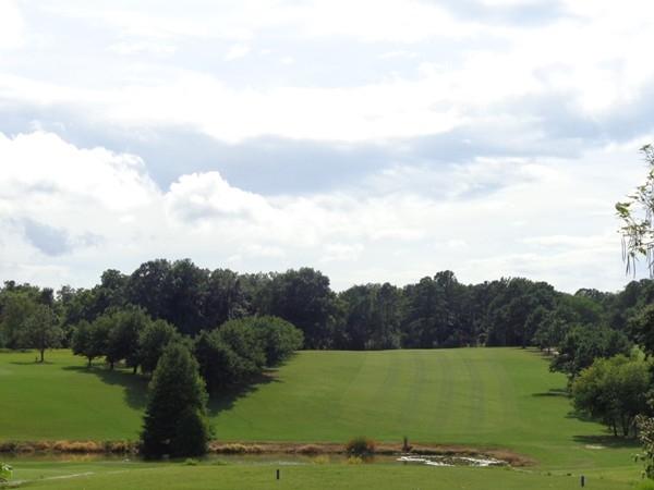 The Pines Golf Club