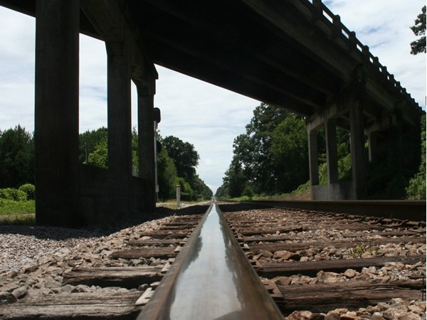 Where will you allow these tracks to take you?