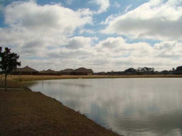 The year round pond attracts birds to the community and it's stocked with brim!
