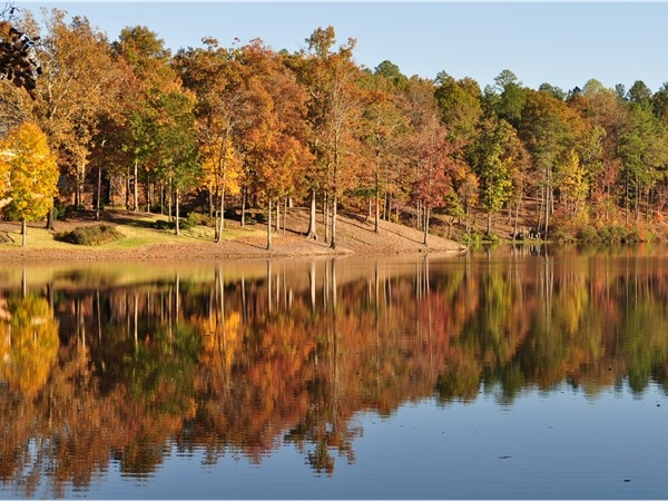 Highland Lakes: Blue Heron Lake, one of five fabulous lakes stocked with large mouth bass