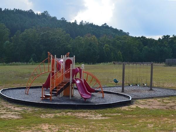 Legacy Springs playground