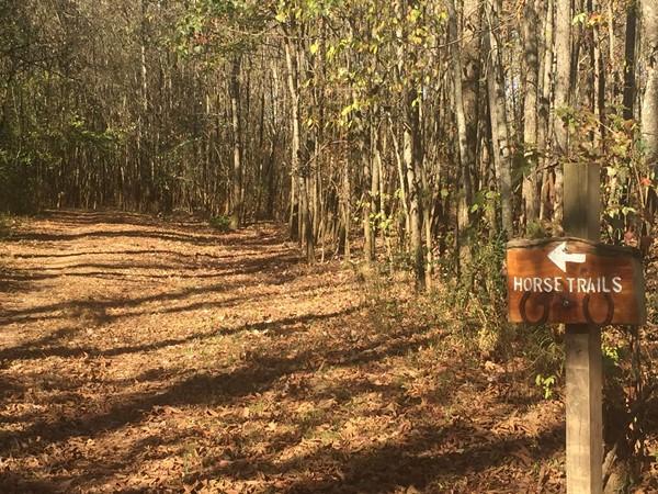 Hayes Nature Preserve Horseback Trails