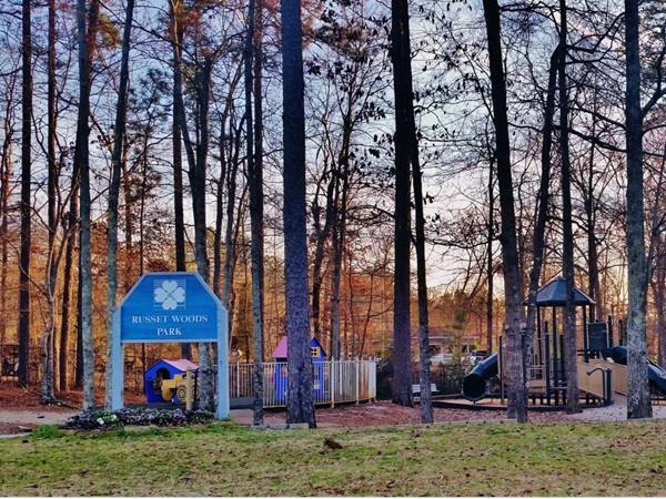 Every subdivision needs a park. This one in Russet Woods is waiting for warmer weather
