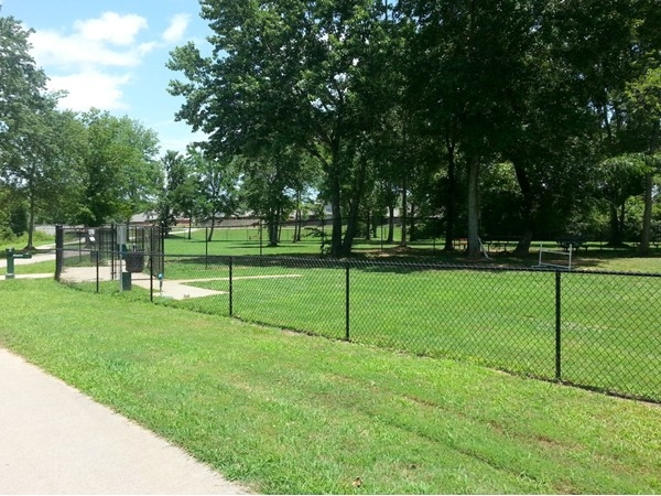 Millstone neighbors and their K-9 friends enjoy the dog park in Mill Creek Greenway