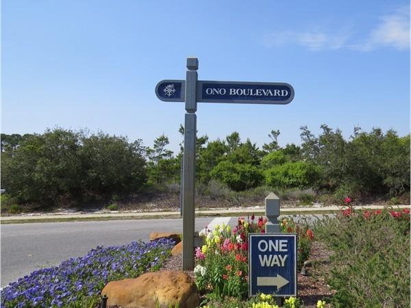Ono Island springtime