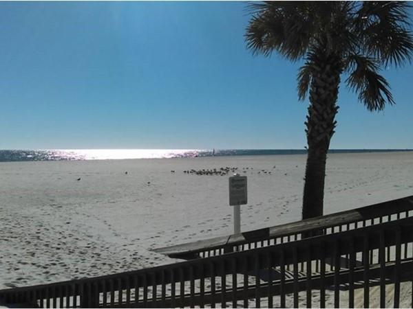 Paradise found at Gulf Shores Beach