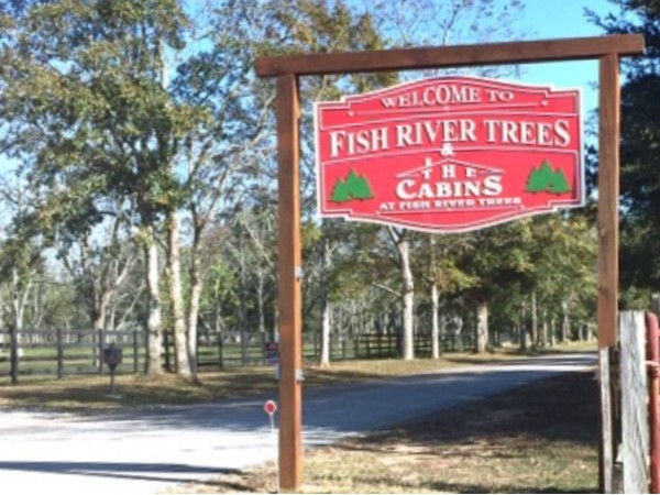 Fish River Trees is where you can find the perfect tree and meet Santa
