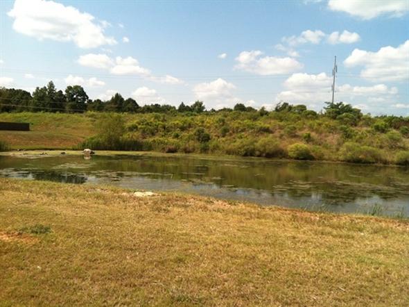 Rosser cove 39 s stocked fishing pond mccalla al for Stocked fishing ponds