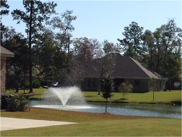 Sehoy offers tree lined streets, community lake and low HOA fees
