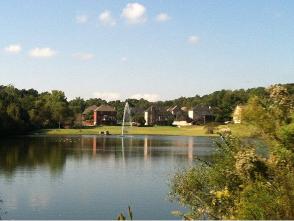 The view of the fountain and lake in the community!
