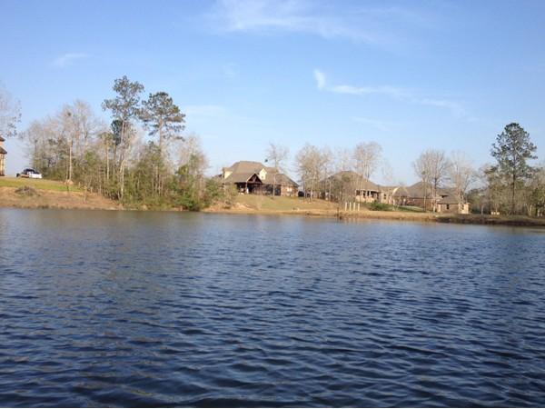 Wilkins Creeks boasts custom built lake front homes and available lots to build your own dream