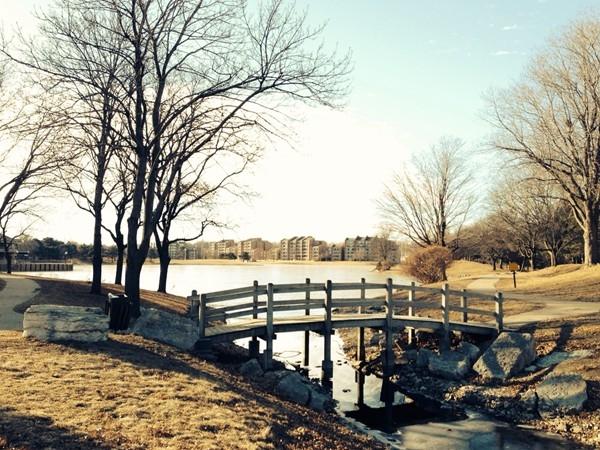 Regency Lake looking south