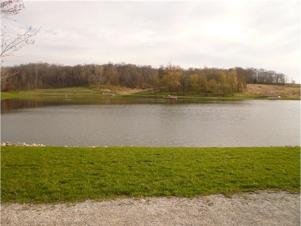 A gorgeous view of the lake at Thomas Mitchell Park