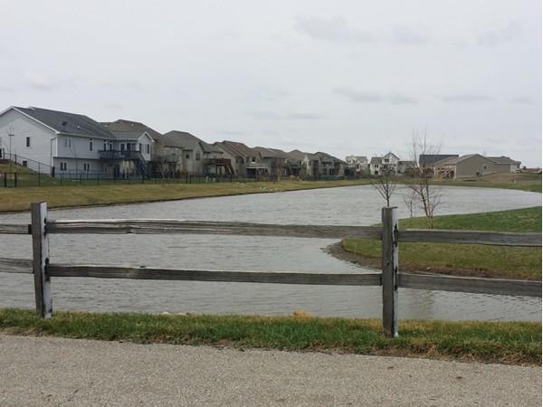 Pond nestled in residential development