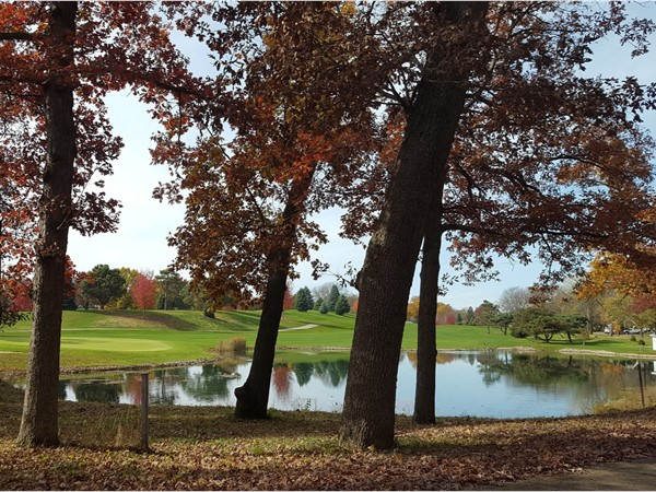 Ellis Golf Course in the fall.  My family's favorite park with lots of activities.
