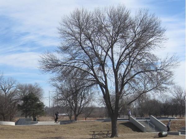 Seymour Smith Park, La Vista, Nebraska Skate Park