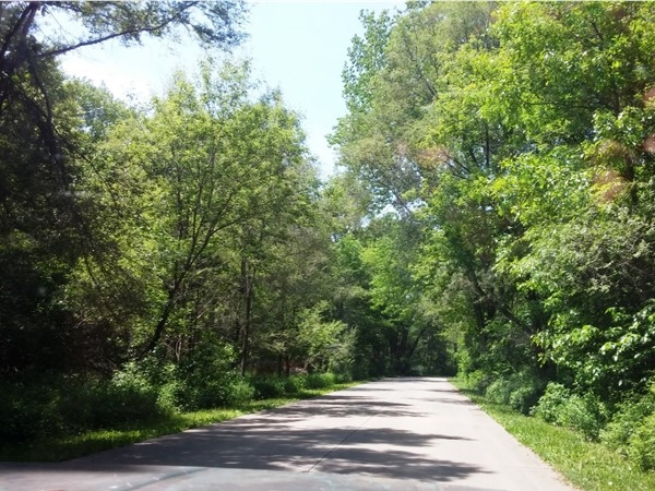 A Sunday drive through George Wyth State Park in Cedar Falls. Perfect in any season
