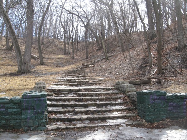 """Uncountable Stairs"" in Hummel Park"
