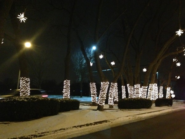 Linden Estates is a main attraction for Christmas lights, party buses and onlookers all season