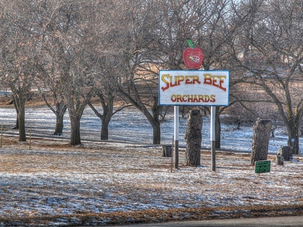 A place to visit, especially in the fall for the best home grown apples at Super Bee Orchards