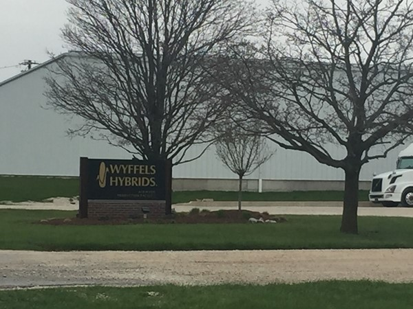 Wyffels Hybrids makes a difference on this community. I worked here 10 years ago