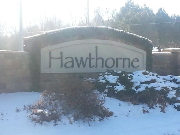 Hawthorne neighborhood