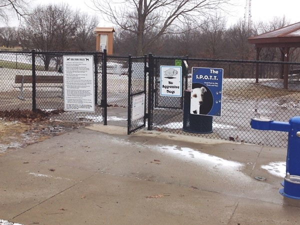 No matter what the weather your furry friends will enjoy the dog park
