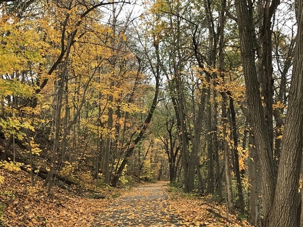 Cedar Falls is home to many great trails for biking, running, walking and skiing