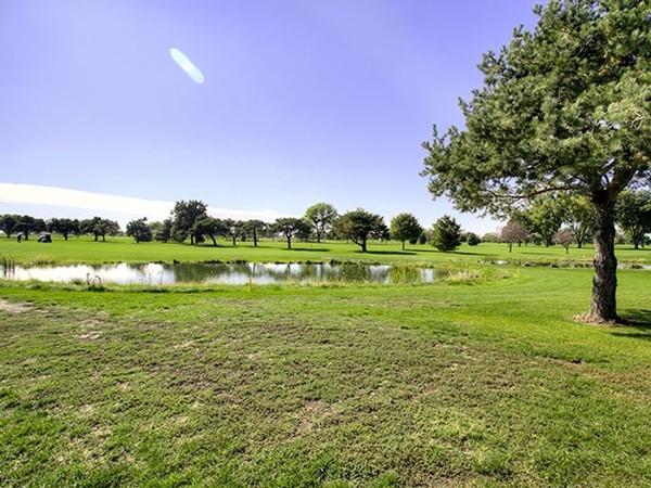 The Pines golf course runs alongside Valley Shores neighborhood.  Backyard views.