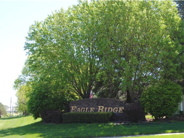 Eagle Ridge Estates located close to all the amenities
