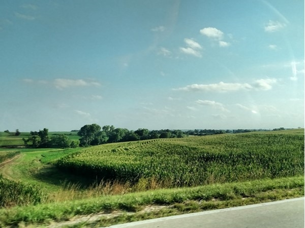 Don't be jealous of my drive to work. Nebraska at its finest. I love this drive on Church Road