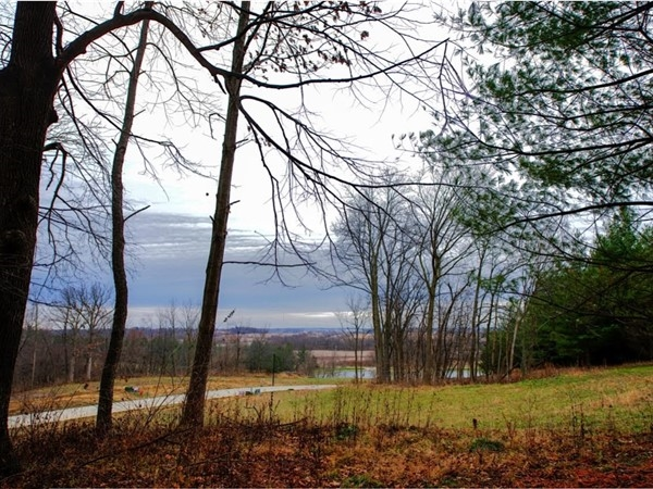 Wooded lots available at Dell Ridge
