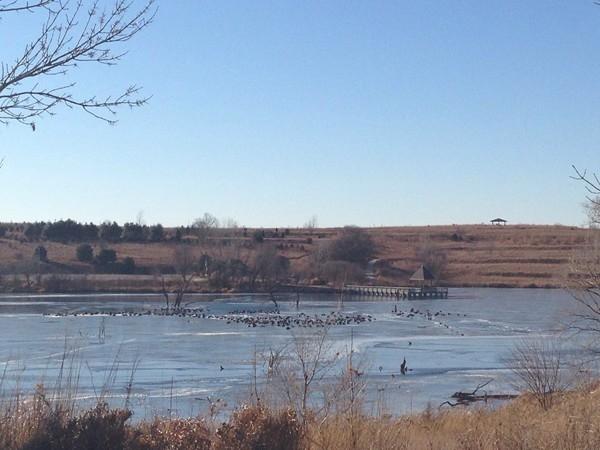 Walnut Creek Lake in winter