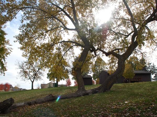 Centennial Park in Waukee