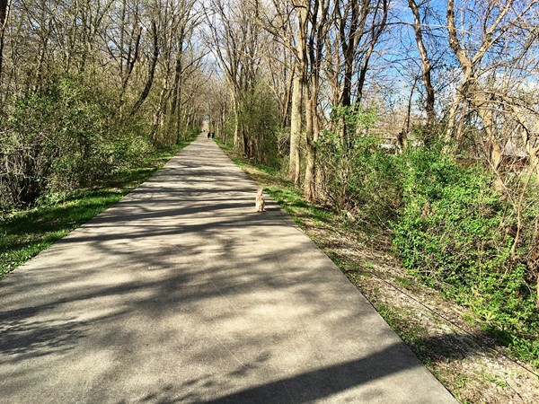 The Cedar Valley Trails connect all community hubs, welcoming residents on bike or foot
