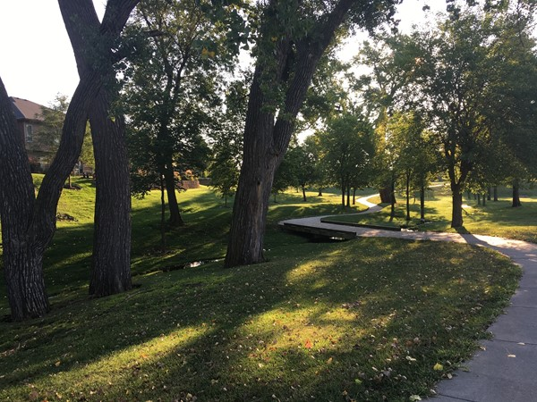 Take a stroll along this trail from Copperfields Park over to Whitehawk Lake