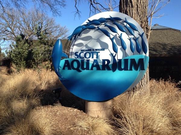 Aquarium with penguin exhibit & walk through tunnel to see sharks