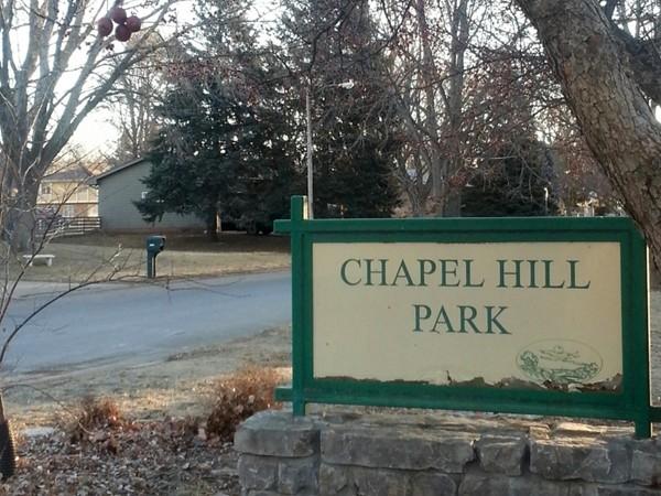 Chapel Hill's neighborhood park, pool and pavilion