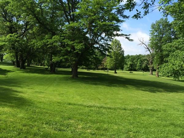 Lots of shade at Heritage Park