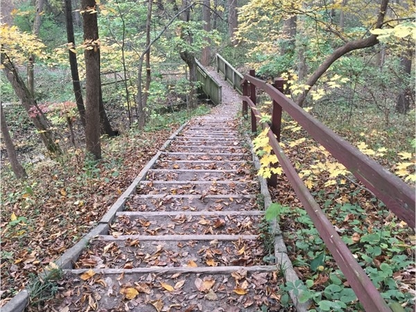Hartman Reserve off of Grand Blvd in Cedar Falls has great nature trails